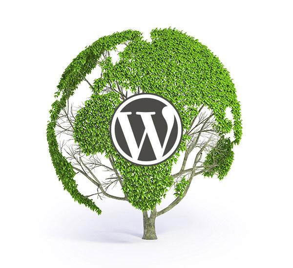 WordPress kotisivut yritykselle
