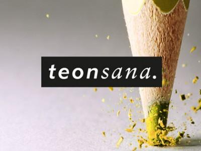 Teonsana - WordPress verkkosivut